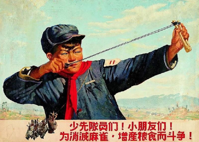 Воробьи в Китае, уничтожение воробьев в Китае, агитационные коммунистические плакаты Китай