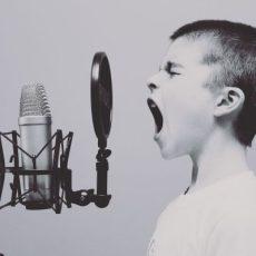 microphone-e837b10620_1920_pixabay