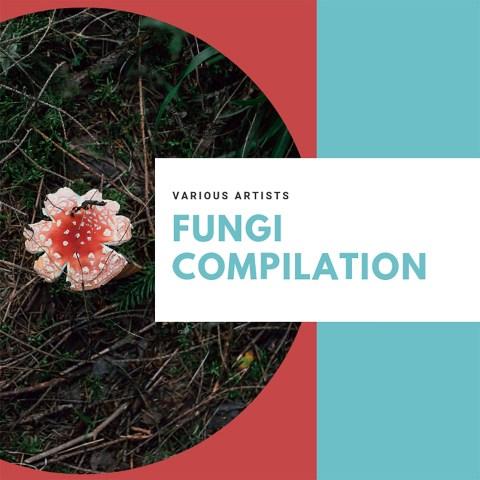 V.A. – Fungi Compilation