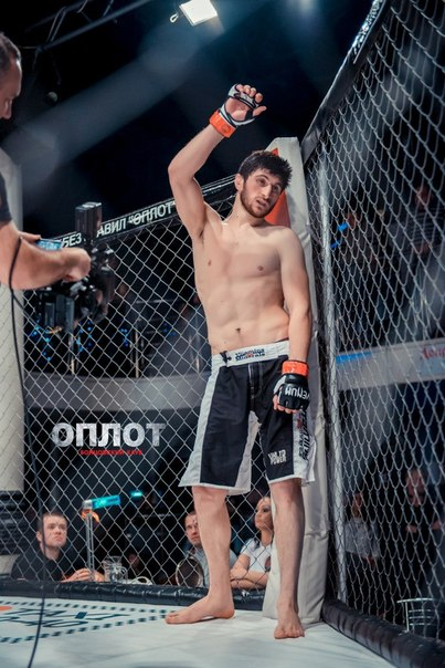 2015 Bloody Elbow MMA Scouting Report 5 Light Heavyweight