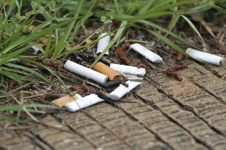 tobacco.litter