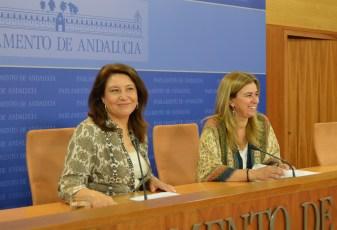 170531 Crespo y Ruiz Sillero