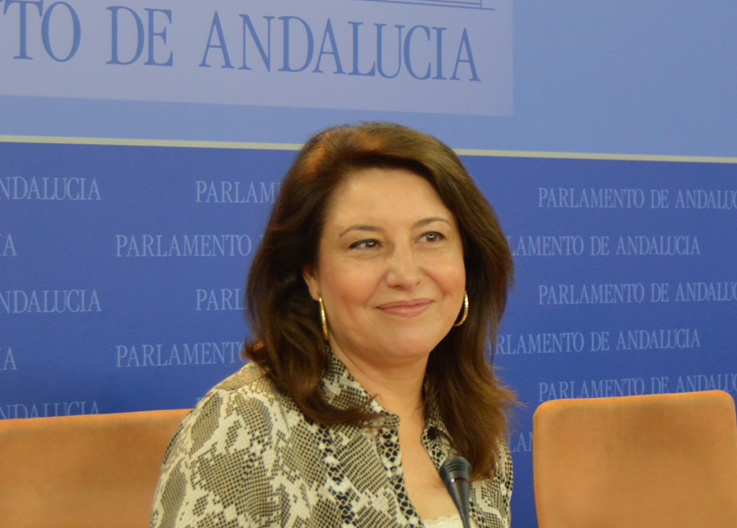 """Crespo: """"A Susana Díaz le ha entrado el miedo a limitar los mandatos tras perder las primarias"""""""