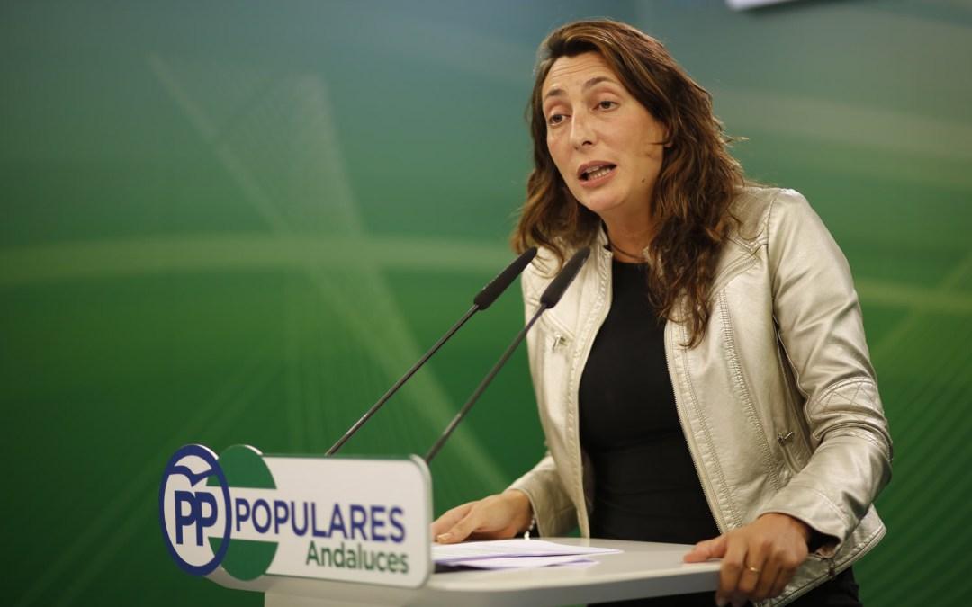 El PP, dispuesto a no presentar enmienda a la totalidad, emplaza al PSOE-A a una reunión antes del viernes sobre presupuestos