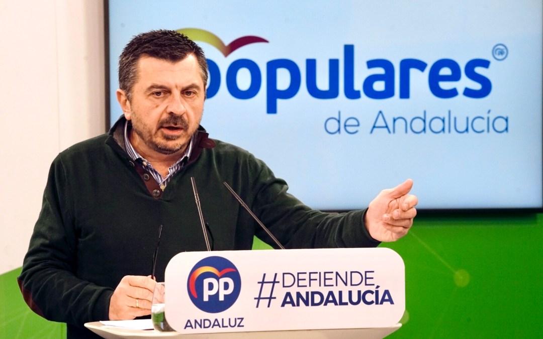 El PPA se pregunta si Chaves, Griñán y Díaz hubieran presidido la Junta sin la ayuda del saqueo de los ERE