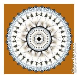 simetria2016-0906-7879no02csc-55x55