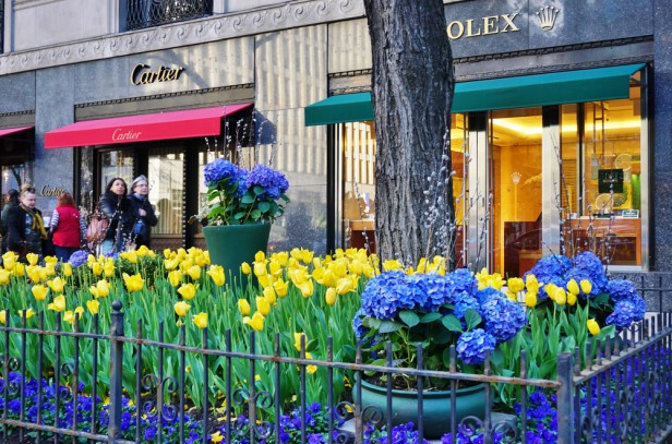 Chicago Apartments, September Events, Shopping Festival