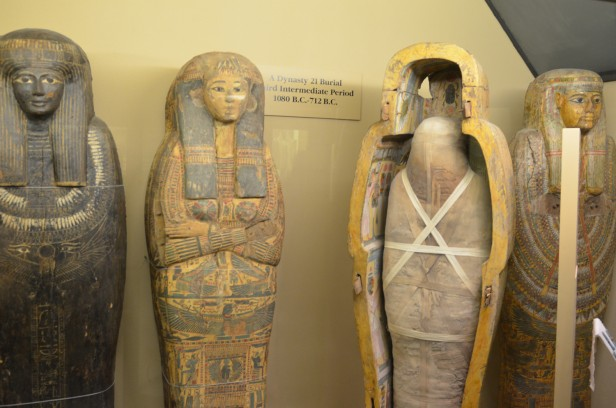 Chicago Apartments, Field Museum, Free Days, Ancient Egypt