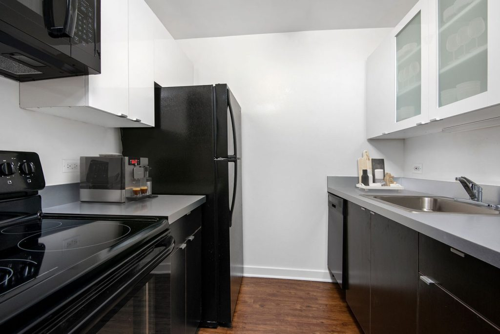 1111 N Dearborn Kitchen Interior Chicago Apartments Gold Coast - 1