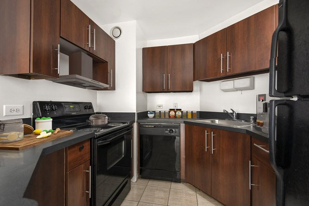 1111 N Dearborn Kitchen Interior Chicago Apartments Gold Coast - 3