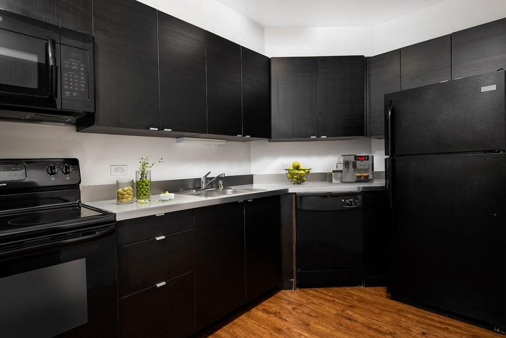 1111 N Dearborn Kitchen Interior Chicago Apartments Gold Coast - 4