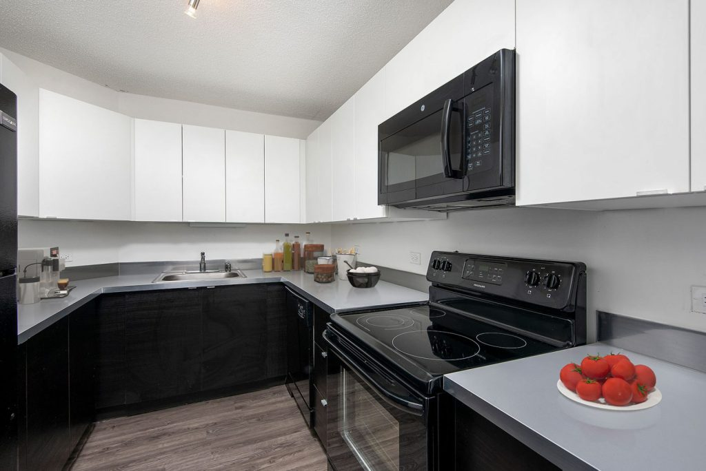 1120 N LaSalle Kitchen Interior Chicago Apartments Gold Coast - 5