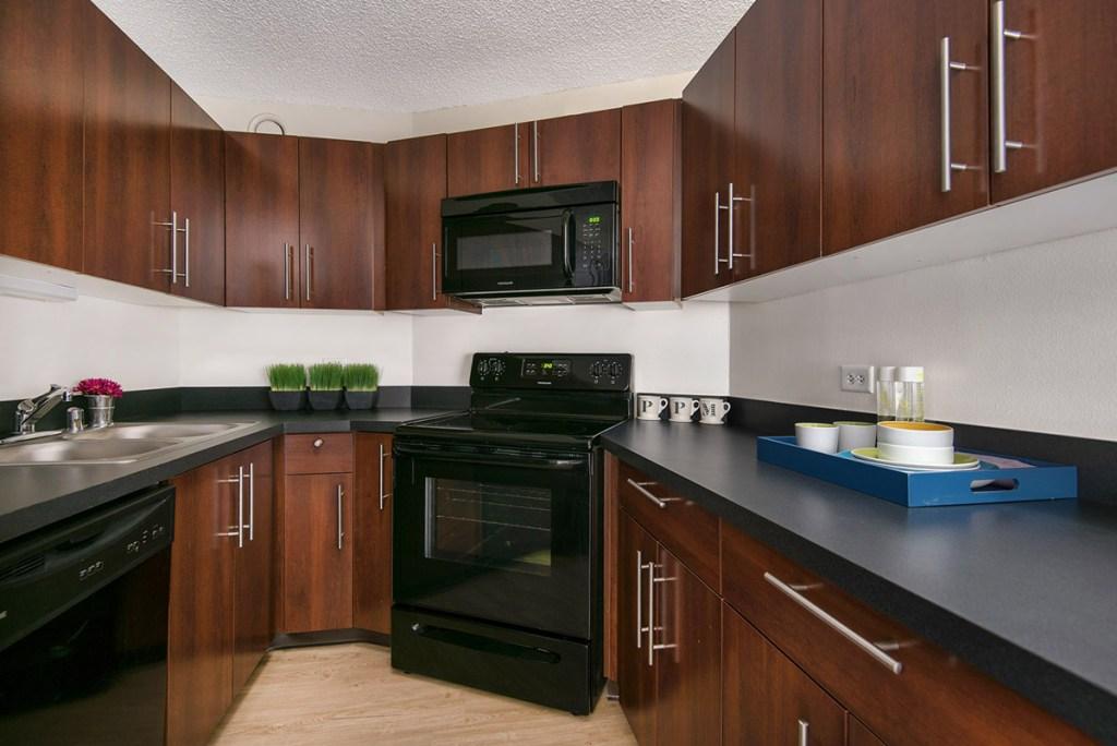 1120 N LaSalle Kitchen Interior Chicago Apartments Gold Coast - 2