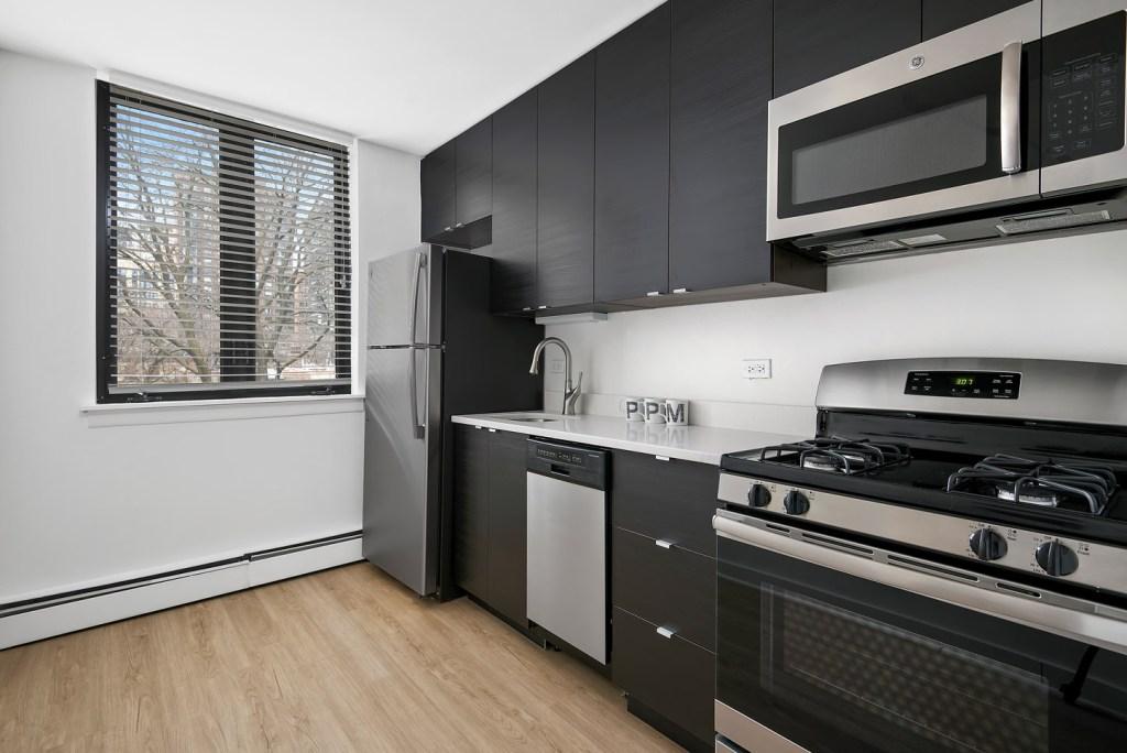 20 E Scott Kitchen Interior Chicago Apartments Gold Coast - 2