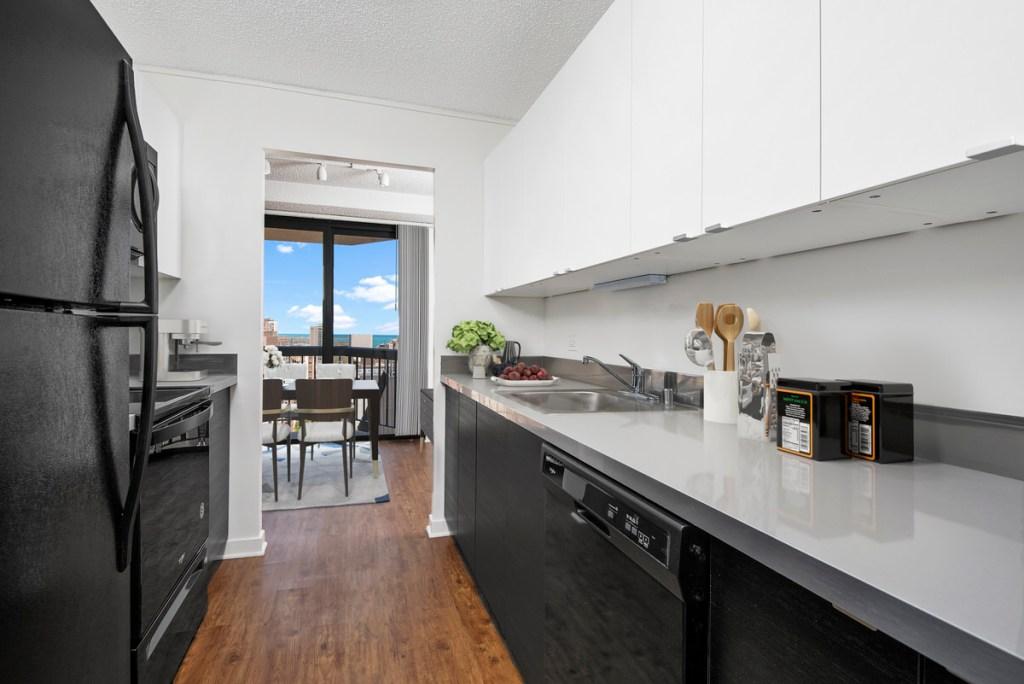 1133 N Dearborn Chicago Apartment Interior Kitchen 2