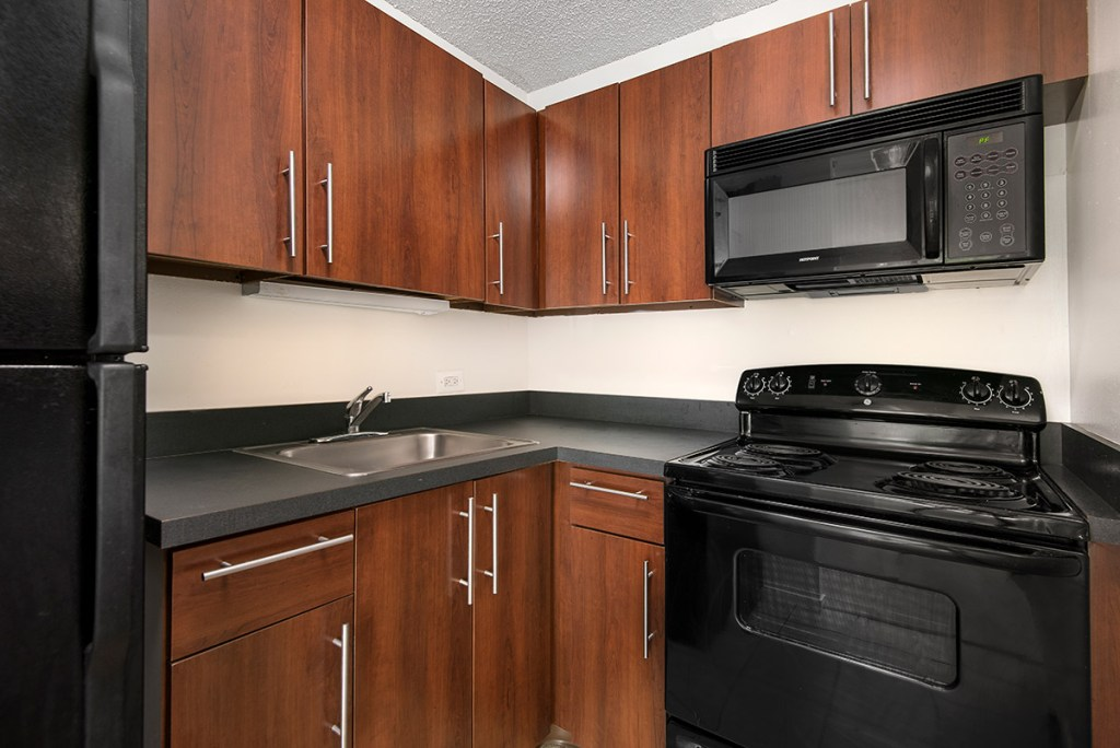 1000 N LaSalle Kitchen Interior Chicago Apartments Gold Coast - 6