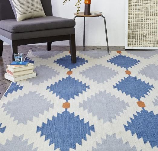 Chicago Apartments, West Elm Rugs