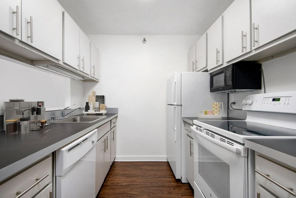1133 N Dearborn Kitchen Interior Chicago Apartments Gold Coast - 3