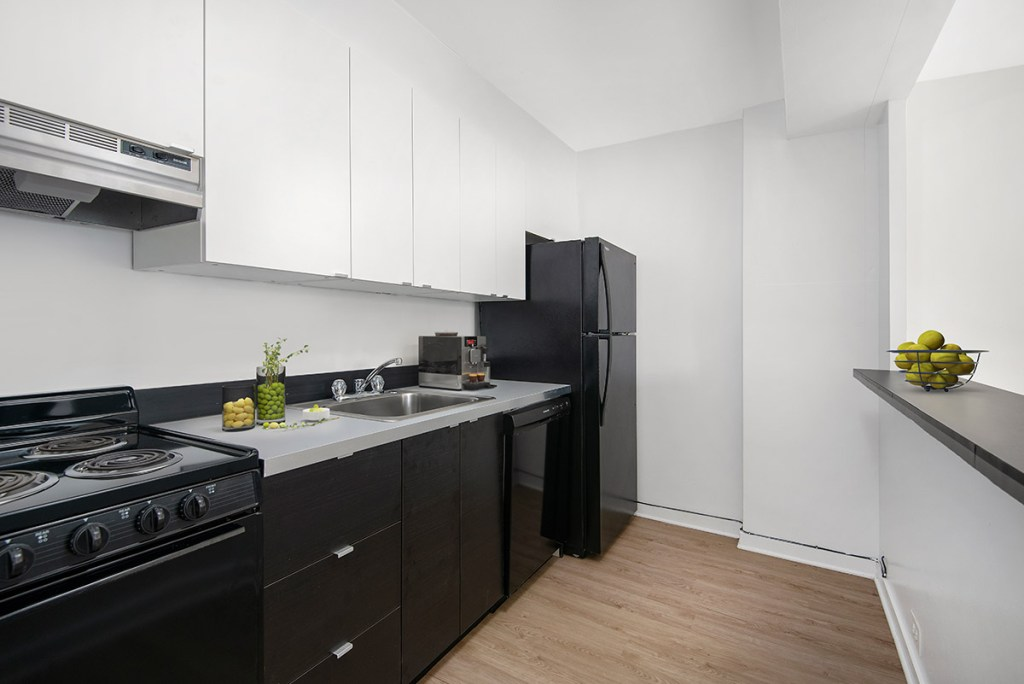 Chicago Apartments, Lakeview, 350 W Oakdale Kitchen