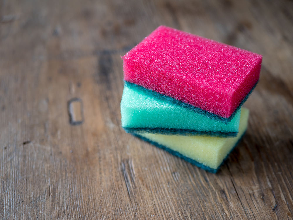 Chicago Apartments, Dish Sponge Cleaning