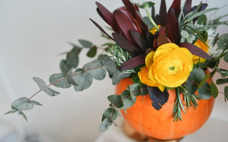 pumpkin decorating ideas, best chicago properties