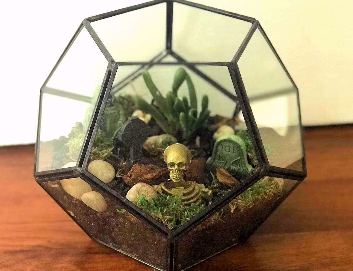 diy graveyard terrarium, lakeview properties chicago