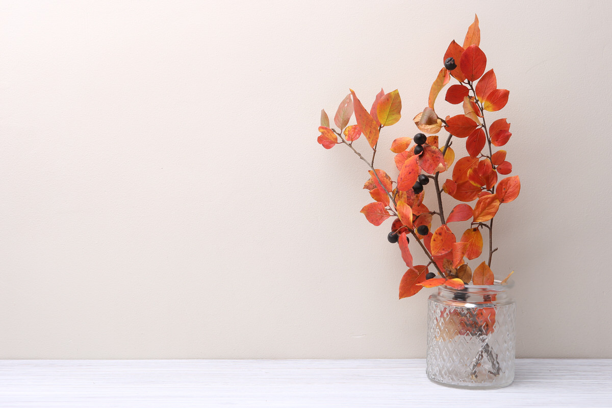 Fall Floral Arranging tips for your apartment