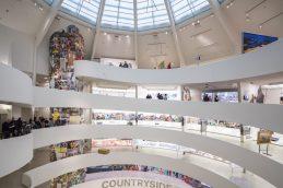 Guggenheim New York, Countryside - The Future