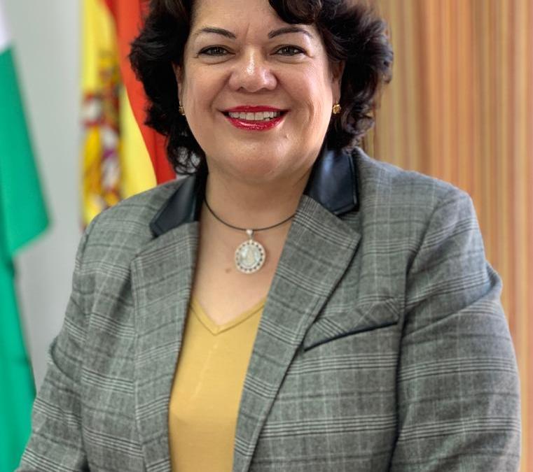 El PP reclama en la Diputación de Sevilla la retirada de la Ley Celaá por poner en riesgo una educación en libertad y de calidad en la provincia