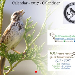 Bird Protection Quebec 2017 Anniversary calendar-cover