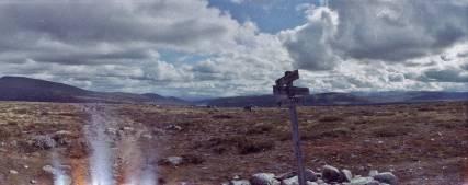 Gebroken maar niet verspilde film in Dovrefjell. Horizon Perfekt met Adox Color Implosion.