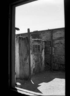 Yashica 72E met Lomography Earl Grey 100