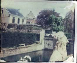 Image transfer van Impossible color film.