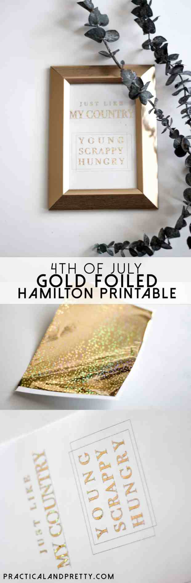 What is more fun for the 4th of July than a Hamilton inspired craft?!