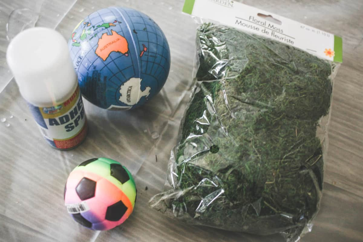 Don't splurge on expensive designer moss balls when you can make them with things found from the dollar store!