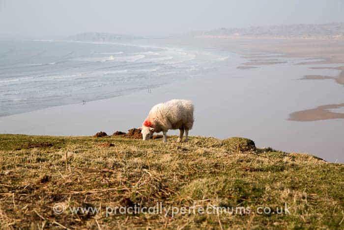 Rhossili Bay, Gower Peninsula, Llangenith, Wales