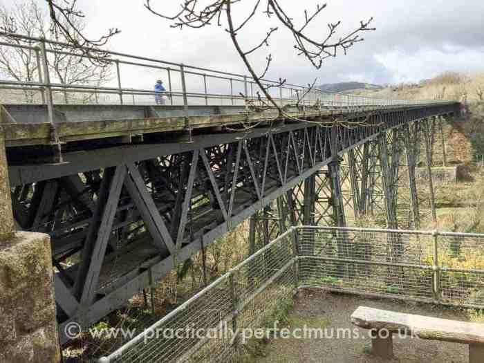 Granite Way with Devon Cycle Hire - explore Dartmoor, Visit Dartmoor