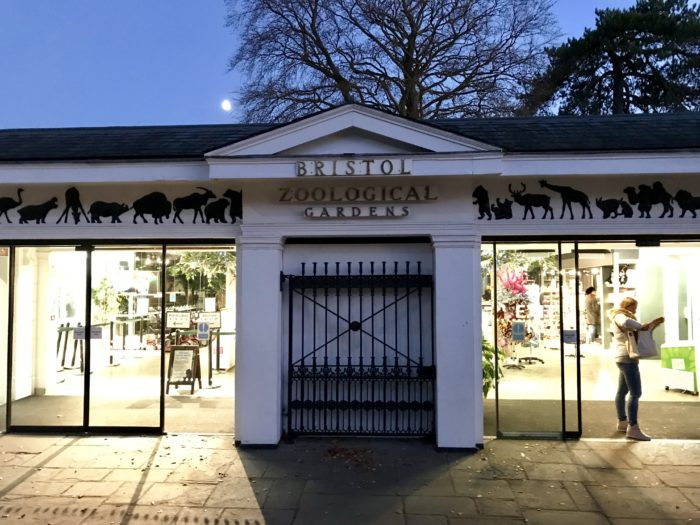 Bristol Zoo - Things to do in Bristol with Kids