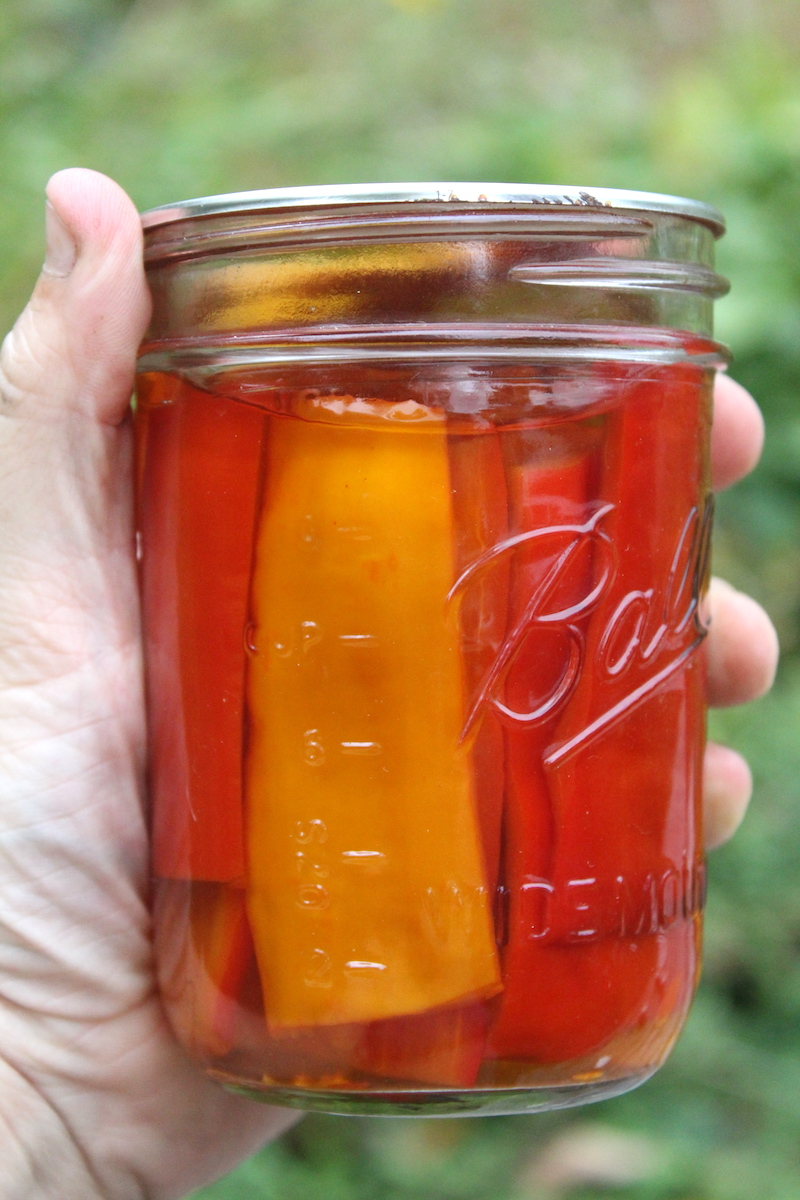 Pickled Sweet Peppers canning recipe