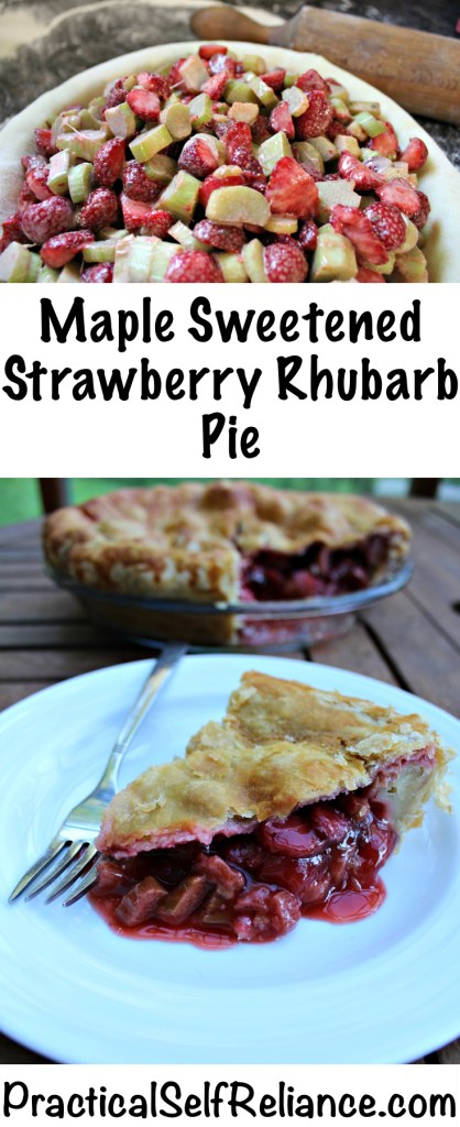 Maple Sweetened Strawberry Rhubarb Pie Recipe #pie #pierecipes #maplesyrup #naturalsweetener #strawberrypie #rhubarbpie #strawberryrhubarb #strawberryrecipe #rhubarbrecipes