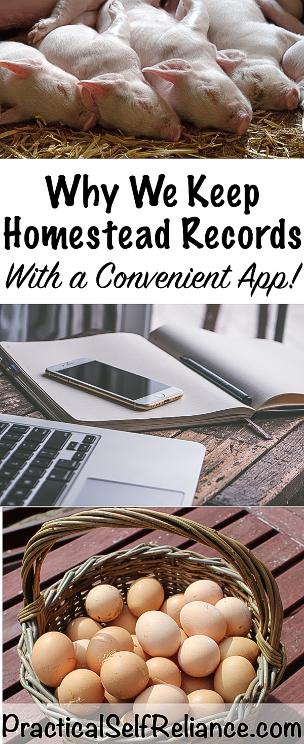 Why We Keep Homestead Records #homestead #homesteading #selfsufficiency #selfreliant #preparedness