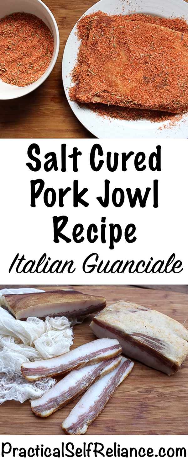 Salt Cured Pork Jowl Recipe ~ Traditional Italian Guanciale ~ Charcuterie #guanciale #bacon #jowlbacon #charcuterie #baconrecipe #homemadebacon #homesteading #selfsufficiency #nosetotail #butchery