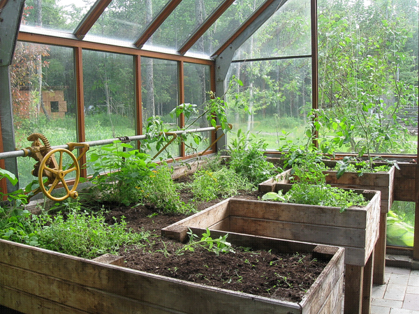 attached greenhouse in the summer