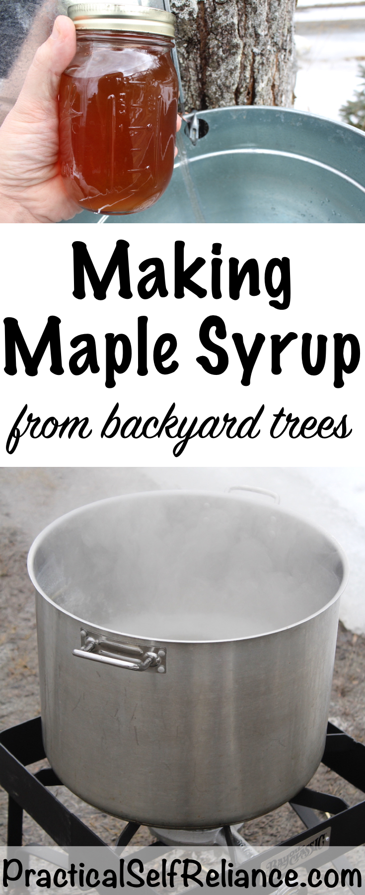 Making Maple Syrup from Backyard Trees #maplesyrup #foodpreservation #homesteading #selfsufficiency #naturalsweetener