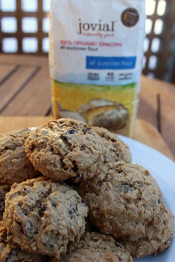 Einkorn Oatmeal Raisin Cookies jovial flour