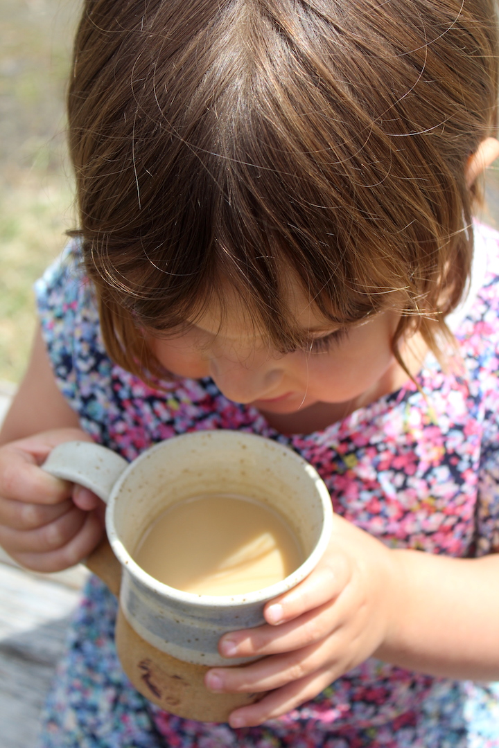 Dandelion coffee for kids