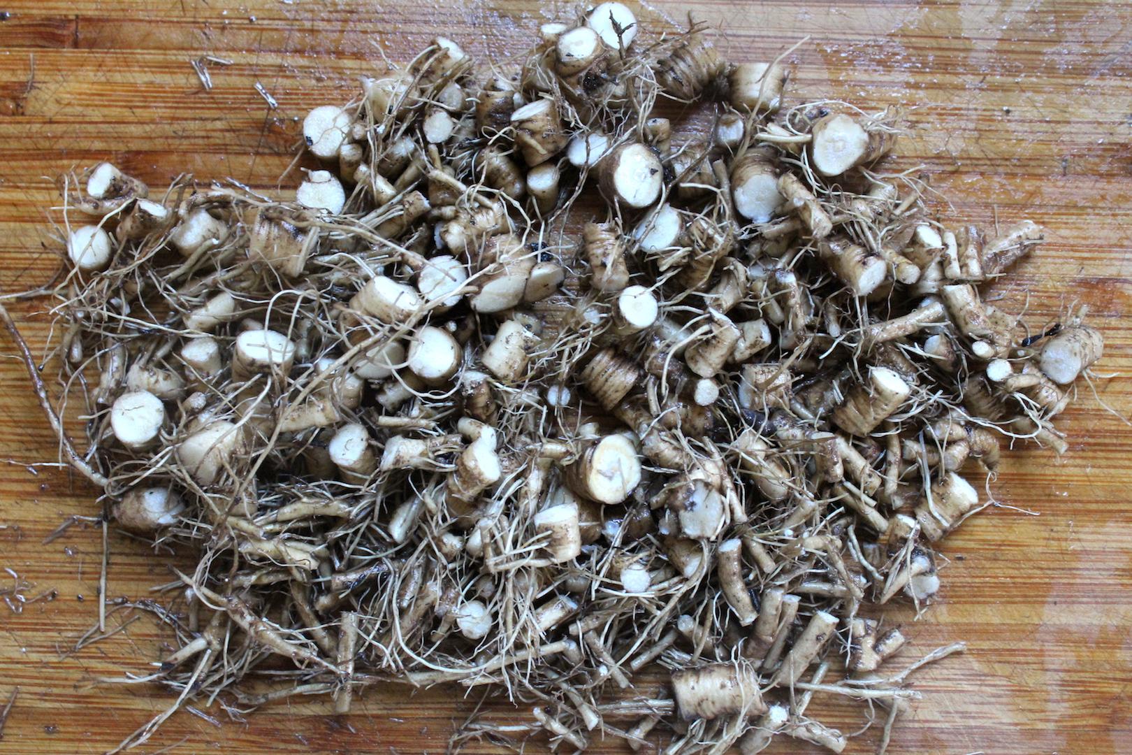 chopped dandelion roots