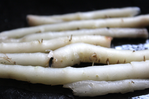 Cooking Dandelion Roots