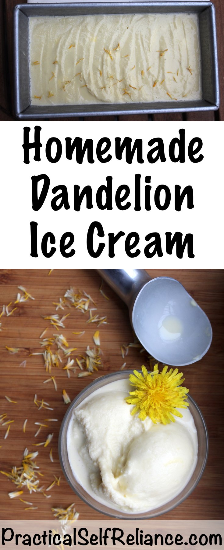 Homemade Dandelion Honey Ice Cream