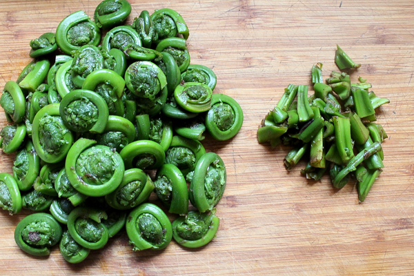 Trimming fiddleheads for canning.